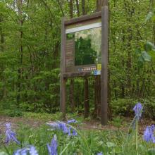 Panneau d'informations sur le sentier forestier ouvert au public