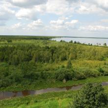 Lake Vygonoshchanskoye surrounded by transitional and fen mires