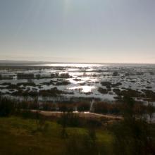 Marais de la Macta