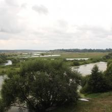The floodplain of the Iput River
