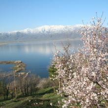 Zirewar Spring
