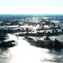 Peak flood near Duba, where the Okavango Panhandle first fans out