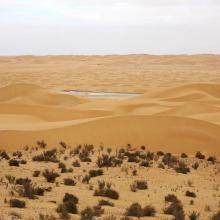 Oued As-Saqia Al Hamra persant le barrage de dunes sableuses