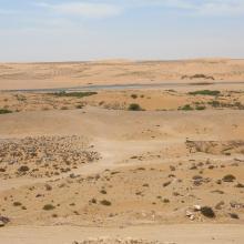 Oued As-Saqia Al Hamra à l'amont immédiat du barrage de dunes sableuses