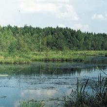 Siline/Klevitsa site: landscape.