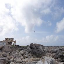 View across Sombrero Island showing old industrial workings associated with past phosphate mining, - note the date the photo was taken is unknown, not as given