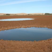 Imlili _ Poches d'eau et substrat sableux autour