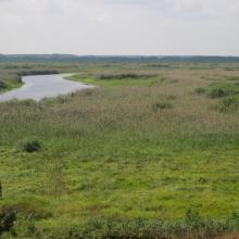 Yaselda river fen