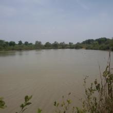 Mare Yanguali dans la plaine d'inondation de la Rivière Pendjari
