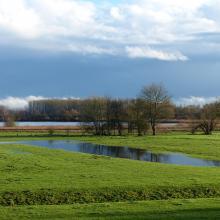 Prairie inondée