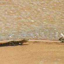 Guelta Matmata