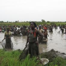 La marre de Sabadou Baranama