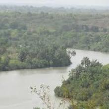 Vue aérienne du fleuve Niandan - Kissidougou