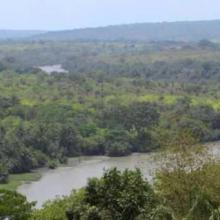Fleuve Rio Pongo