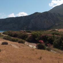 Ripisylve de Oued Marsa