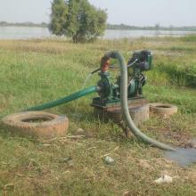 Utilisation de motopompe dans la culture maraîchère