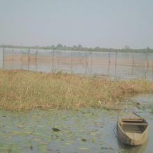 Enclos de pisciculture dans le lac