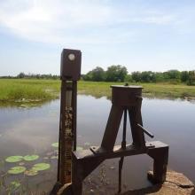 Photo 12 : Piézomètre installé sur la digue du cours d'eau principal