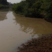 Photo 3 : cours d'eau affluent du fleuve Pendjari