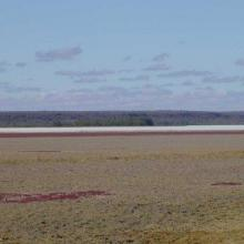 View east across Lac Tsimanamsotsa, north end.