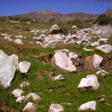 Reserva Natural Villavicencio