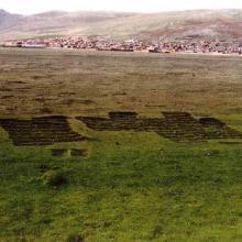 Extracción de vegetación de turberas que sirve como combustible en la región.