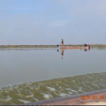 AL-Hammar marsh/ Al-Mashab/ Basra
