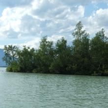Lake Laitaure with small islets with vegetation like Salix spp. and Betula spp.
