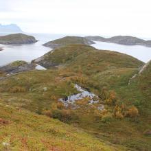 Fjærkvitingen - Overgrowing of rich mire facing north