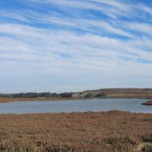 Humedal Salinas Grande