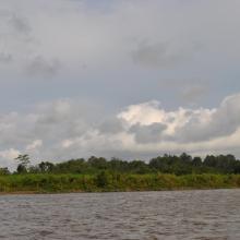 Navigation sur le fleuve Nyanga