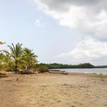 Lagunes