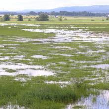 Lake Östen