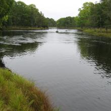 Slow water course of Emån, downstream