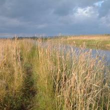 Lake Persöfjärden