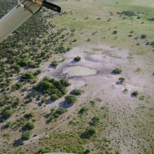 Ephemeral waterhole formed during the rainy season.