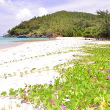 Playa El Soldado