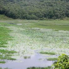 Khaste Lake