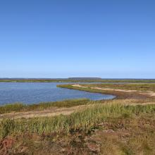 Shot of Malpeque Bay from Malpeque Bay Salt Marsh Provincial Natural Area within the RAMSAR site