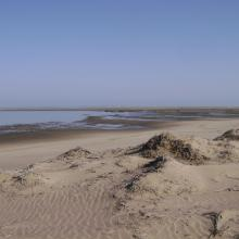 View across the lagoon at low tide, looking north-west.