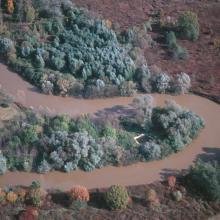 Meandering Rába River.