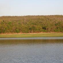 Forêt sèche en bordure du lac Ravelobe