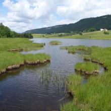 Tourbière et Lac des Mortes - Chapelle-des-Bois