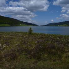 Tourbière et lac des Rousses - Vallée de l'Orbe