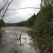 Flood at the sub-site Lamyra