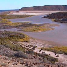Punta María