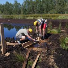"bog restoration in the ""Hochrunstfilze"""