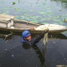 Khao Sam Roi Yot Wetland