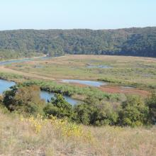 The photo was taken during a field study part of the preparation of the Ropotamo Reserve Management Plan.