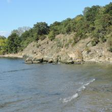 The bay. The photo was taken during a field study part of the preparation of the Ropotamo Reserve Management Plan.